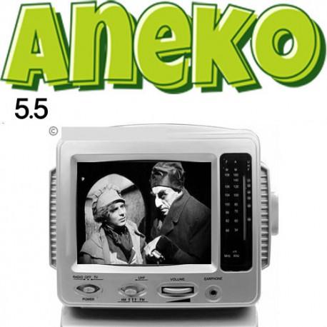 تلویزیون کوچک آنیکو نوستالژی